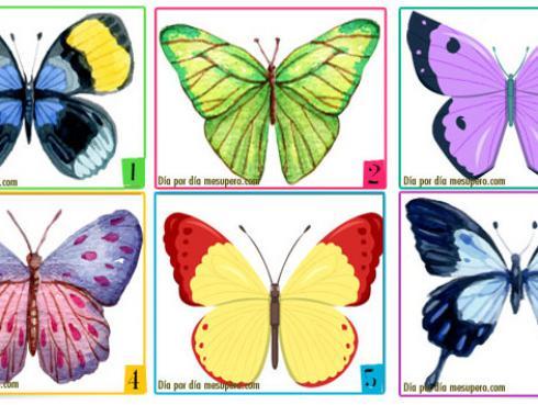 ¡Descubre rasgos de tu personalidad escogiendo la mariposa que más te guste!