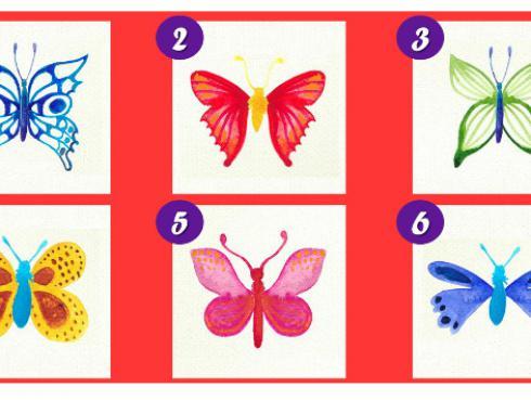 ¡Elige la mariposa que más te guste de la imagen y descubre rasgos de tu personalidad!