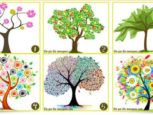 ¡Escoge el árbol que más te agrada y descubre lo que dice sobre tu personalidad!