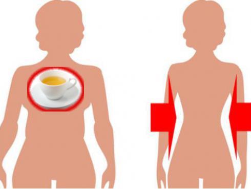 Infusión para bajar de peso, eliminar toxinas y problemas gástricos