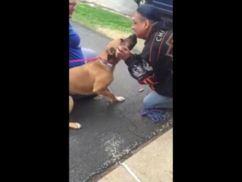 El reencuentro de un perro y su amo después de dos años enternece a Facebook