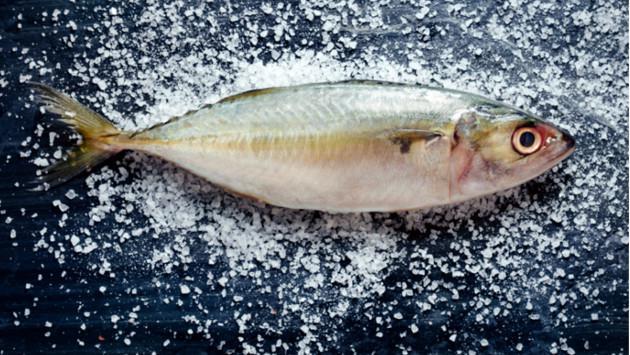 ¡Aprende cómo congelar y descongelar el pescado y evita infecciones!