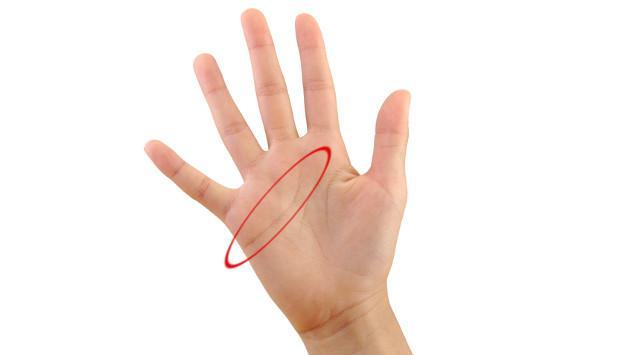 Descubre qué significa esta línea en tu mano