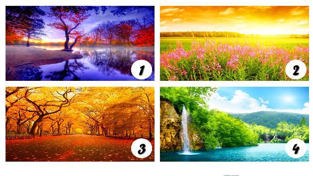 ¡Elige el paisaje que más te gusta de la imagen y mira lo que dice de ti!