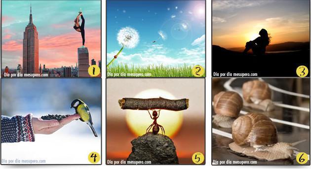 ¡Elige la imagen que más te guste y descubre el mensaje que tiene para ti!