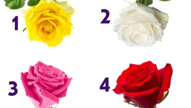 Las rosas revelan rasgos de tu personalidad