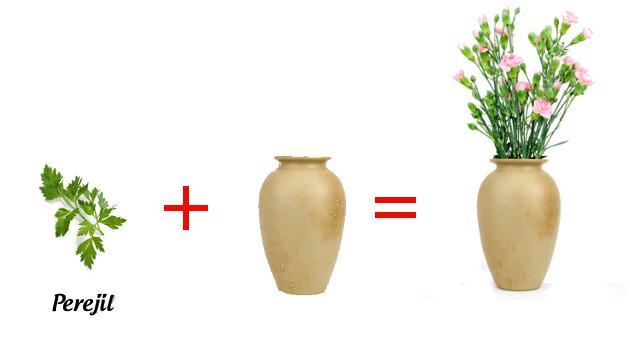 Perejil para que tus flores duren más tiempo