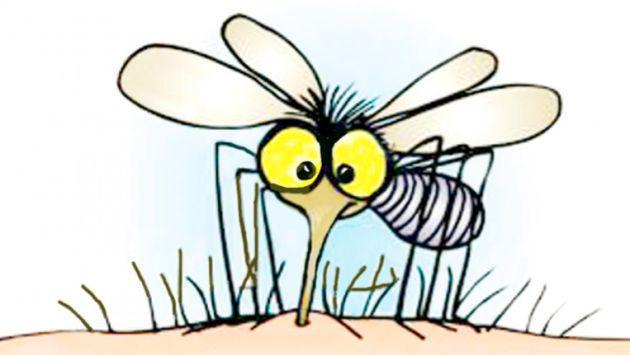 ¿Por qué los mosquitos pican a unos más que a otros?