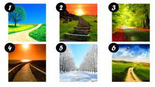 ¡Elige el camino que más te agrade y descubre rasgos de tu personalidad!