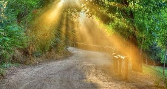 Por los caminos del Señor