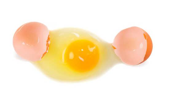 La cáscara de huevo