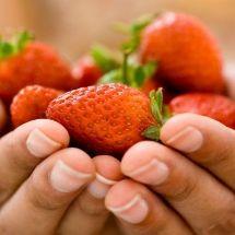 Mascarilla de fresas para prevenir las arrugas.